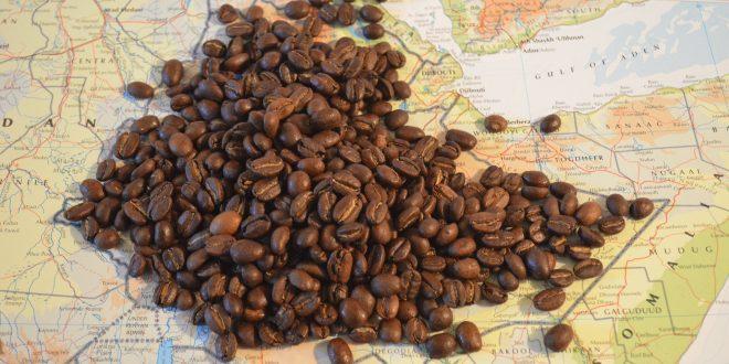 モカコーヒーの特徴と美味しい淹れ方